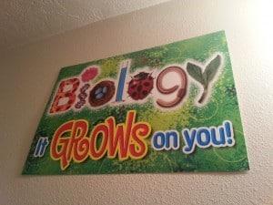 Biology poster