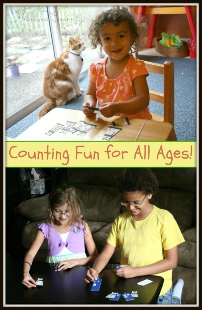 Counting Fun for All Ages