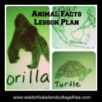 Animal Facts Lesson Plan + Geeky Educational Link Up