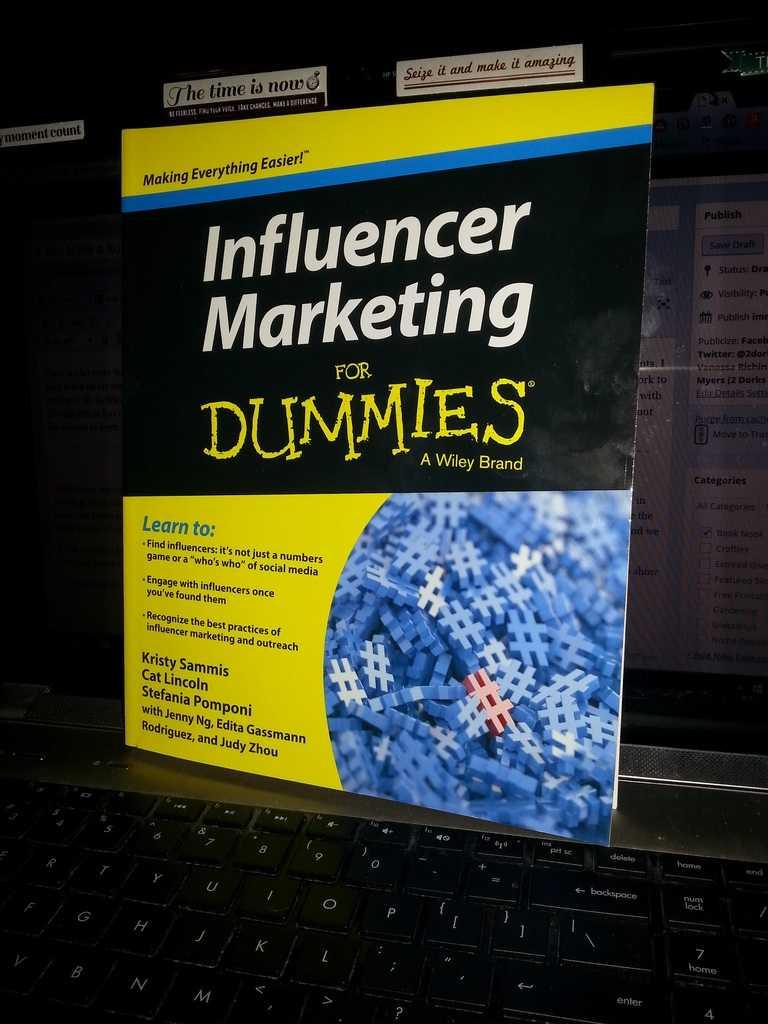 Work Online? Read Influencer Marketing for Dummies