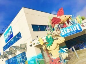 Visit the Sea Life Aquarium while you are at LEGOLAND